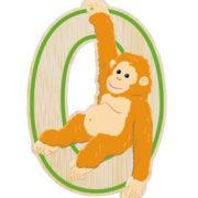 o-orangutan