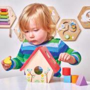 PL085-Bird-House-Wooden-Shapes-Sorter-Toddler-Toy-Boy-2